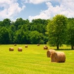 Farmland Assessment